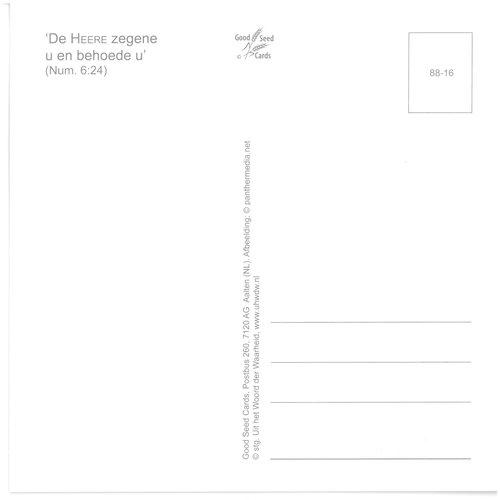 Enkelvoudige ansichtkaart 88-16