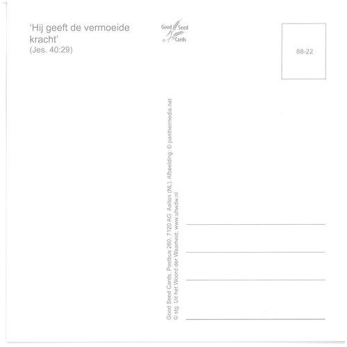 Enkelvoudige ansichtkaart 88-22