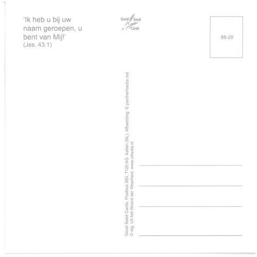 Enkelvoudige ansichtkaart 88-29