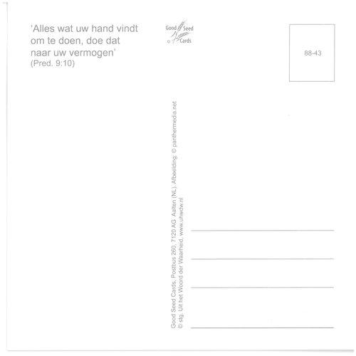 Enkelvoudige ansichtkaart 88-43