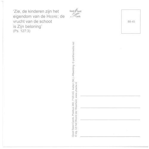 Enkelvoudige ansichtkaart 88-45
