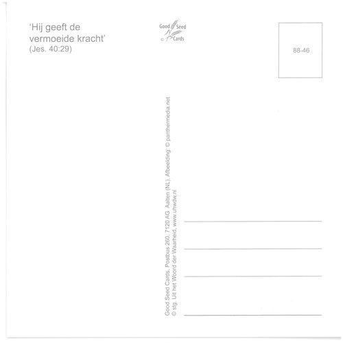 Enkelvoudige ansichtkaart 88-46