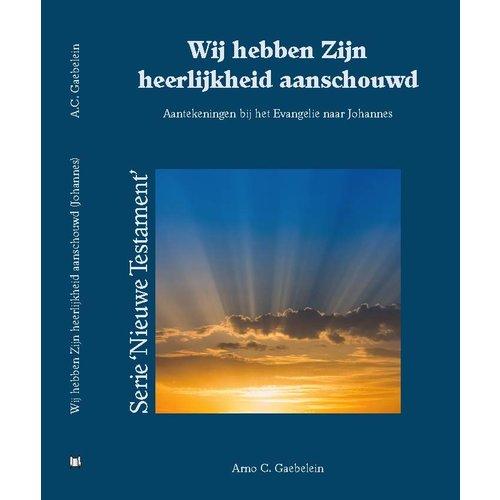 Serie 'Nieuwe Testament' Wij hebben Zijn heerlijkheid aanschouwd (Johannes-evangelie)