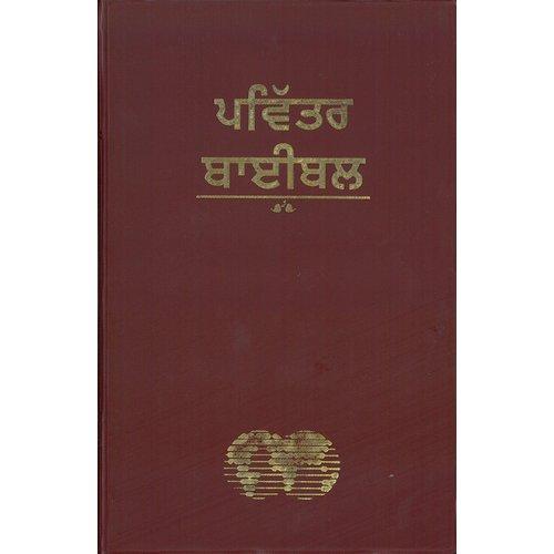 Bijbel Punjabi