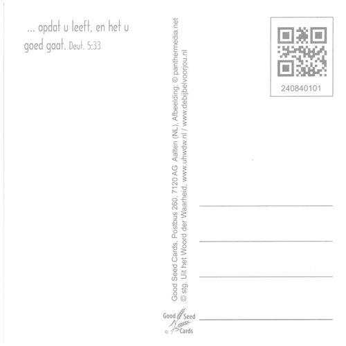 Vierkante luxe ansichtkaart 84-01