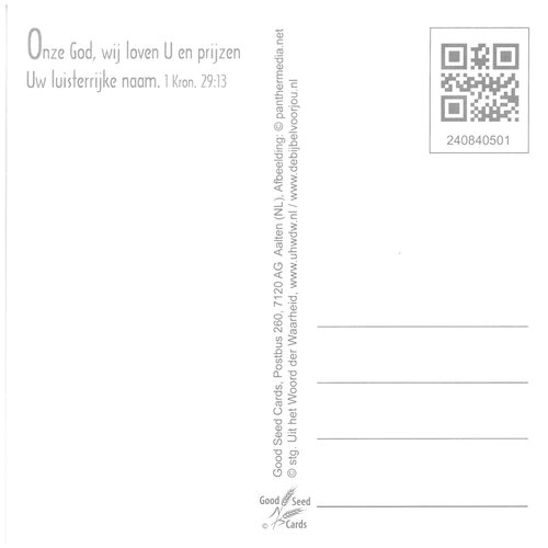 Vierkante luxe ansichtkaart 84-05