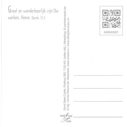Vierkante luxe ansichtkaart 84-09