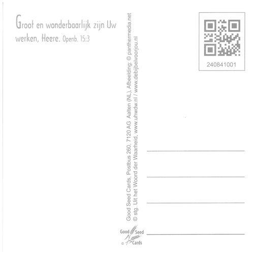 Vierkante luxe ansichtkaart 84-10