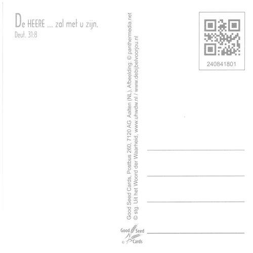 Vierkante luxe ansichtkaart 84-18