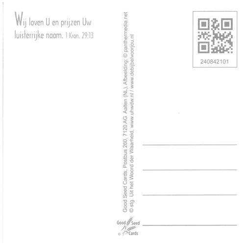 Vierkante luxe ansichtkaart 84-21