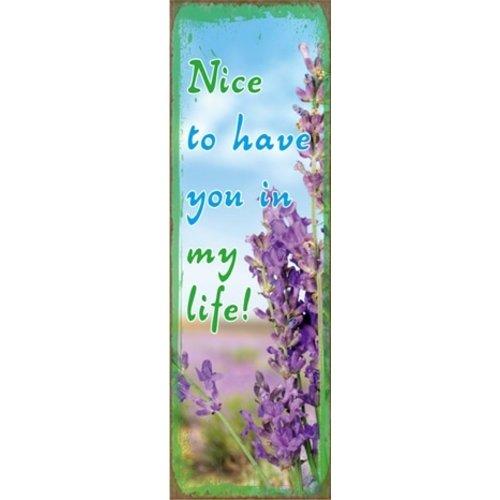 metal fridge magnet/metalen magneet 5x15 cm. met de tekst:  Nice to have you in my life!
