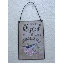 Engelstalig metalen wandbord 10x15 cm, ong. 60 gr, motief  3. Met de tekst: I am so blessed to have