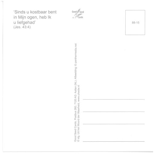 Enkelvoudige ansichtkaart 88-15