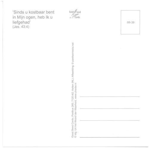 Enkelvoudige ansichtkaart 88-39