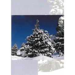 Luxe dubbelkaart met los inlegvel met de tekst: Ps. 62:6 Adk0428bv