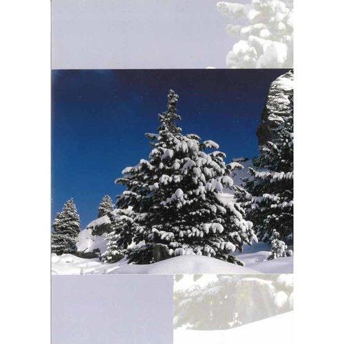 Luxe dubbelkaart met los inlegvel met de tekst: Ps. 62:6 Incl. envelop