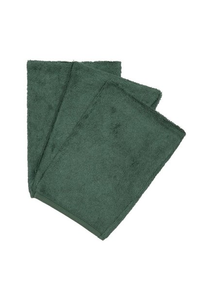 Set van 3 washandjes aspen green