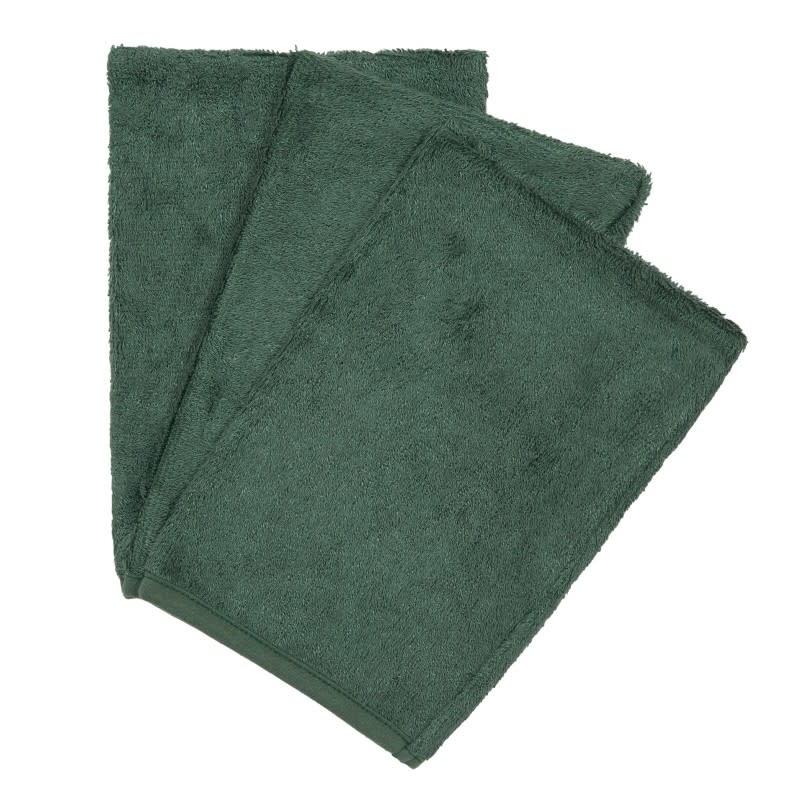 Set van 3 washandjes aspen green-1