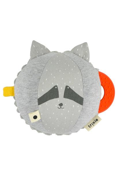 Activiteitenbal mr. raccoon