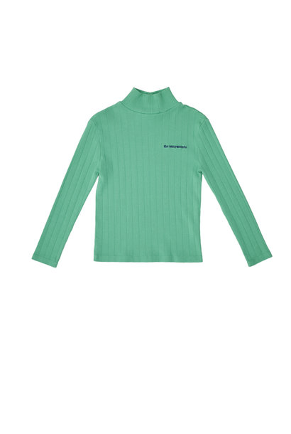 Turtle neck tshirt green
