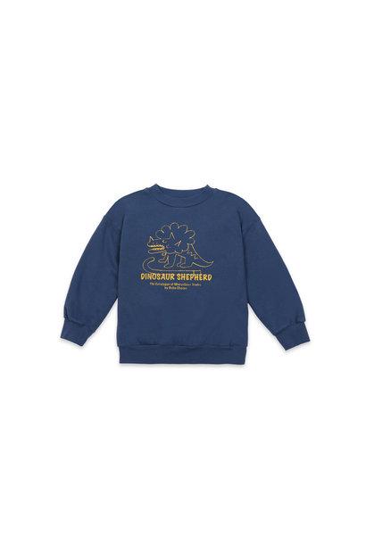 Dino sweatshirt teens