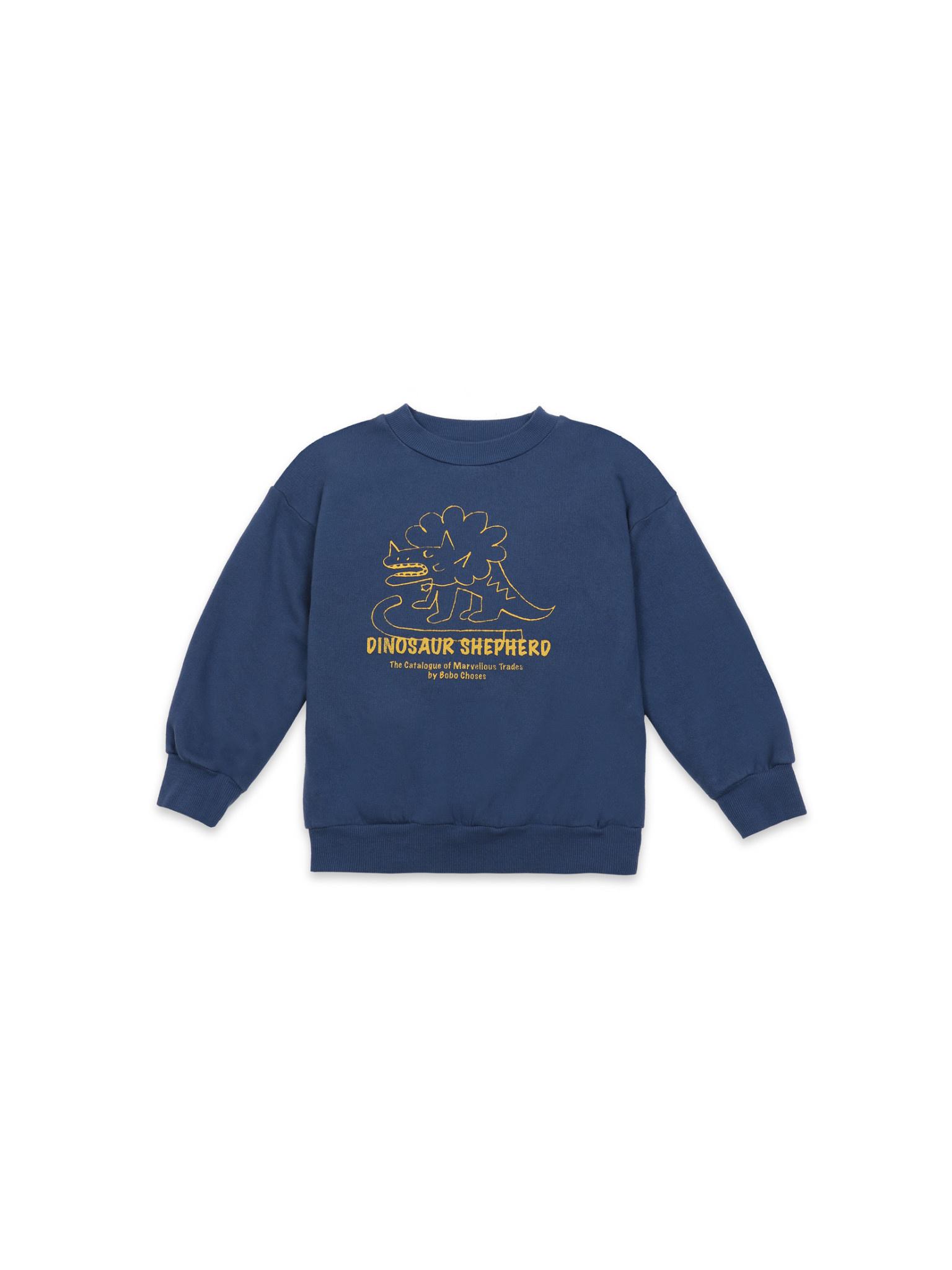 Dino sweatshirt teens-1