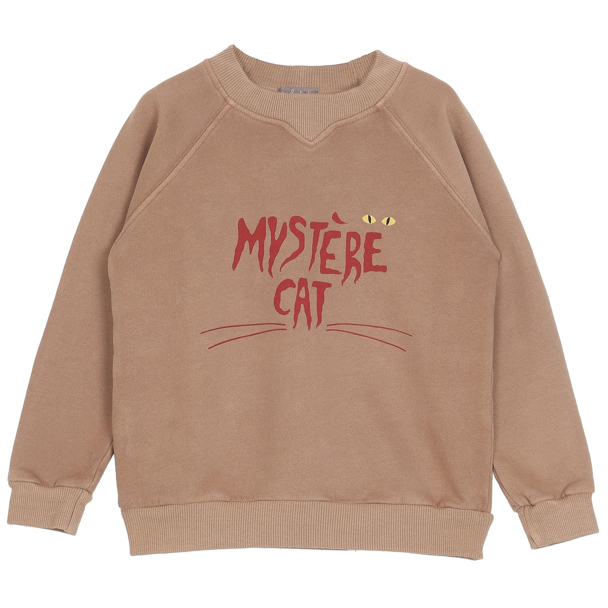 Sweatshirt kids marron glace mystere-1