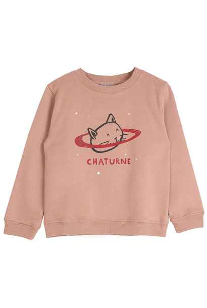 Sweatshirt marron glace chaturn