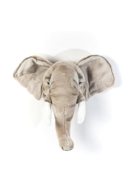 Dierenkop olifant george