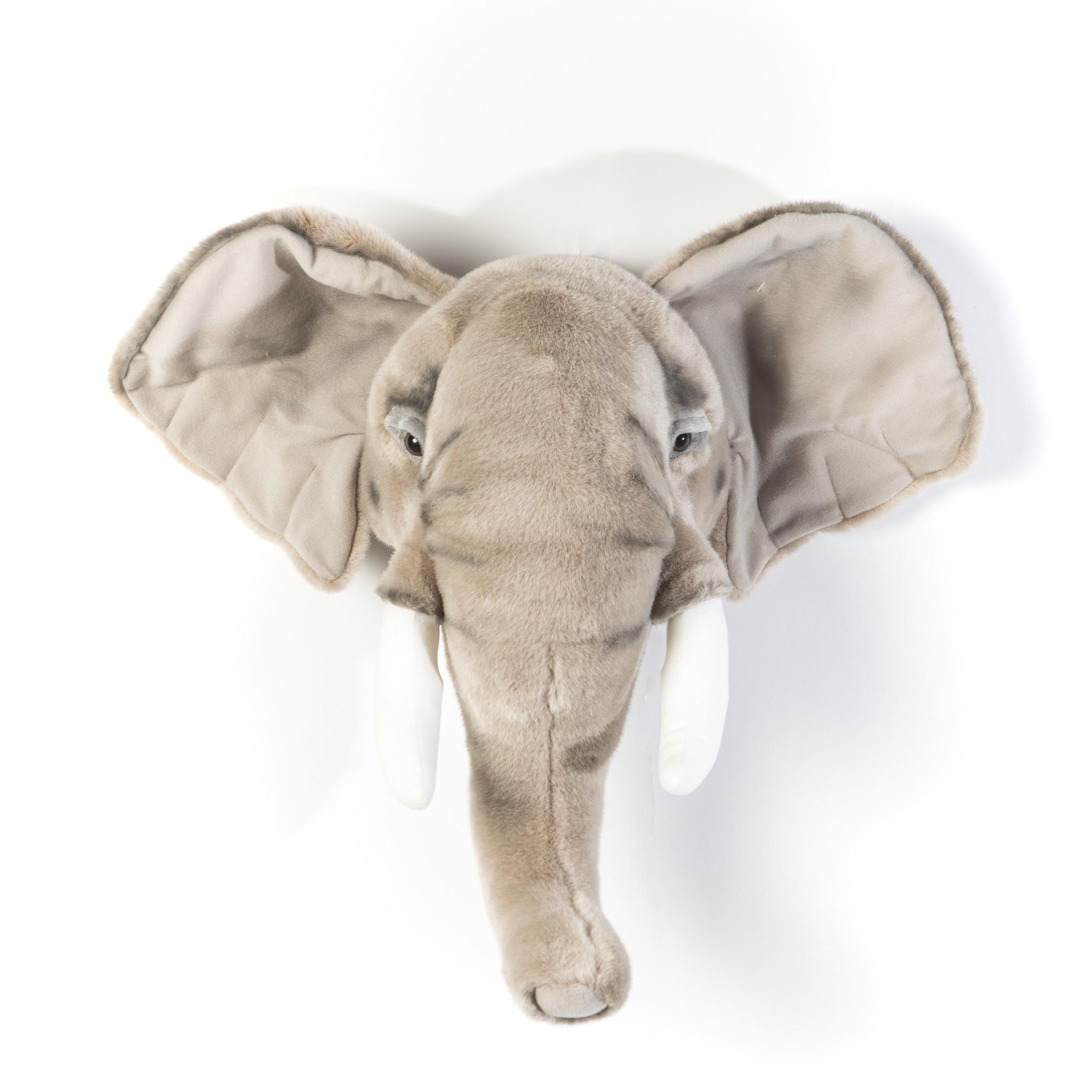 Dierenkop olifant george-1