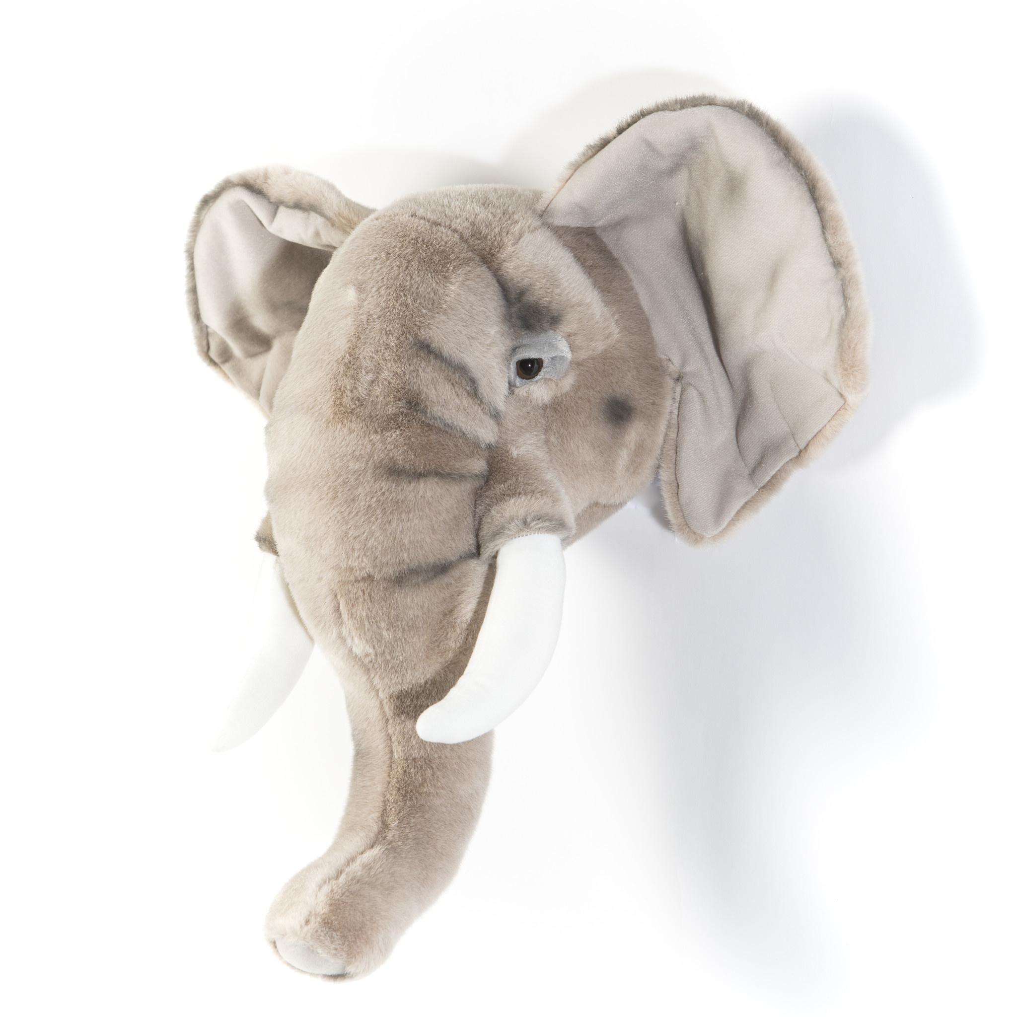 Dierenkop olifant george-3