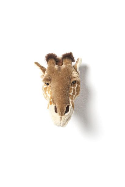 Dierenkop giraf ruby
