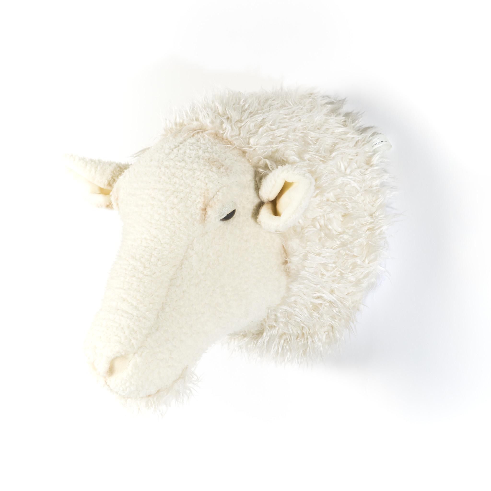 Dierenkop schaap harry-2