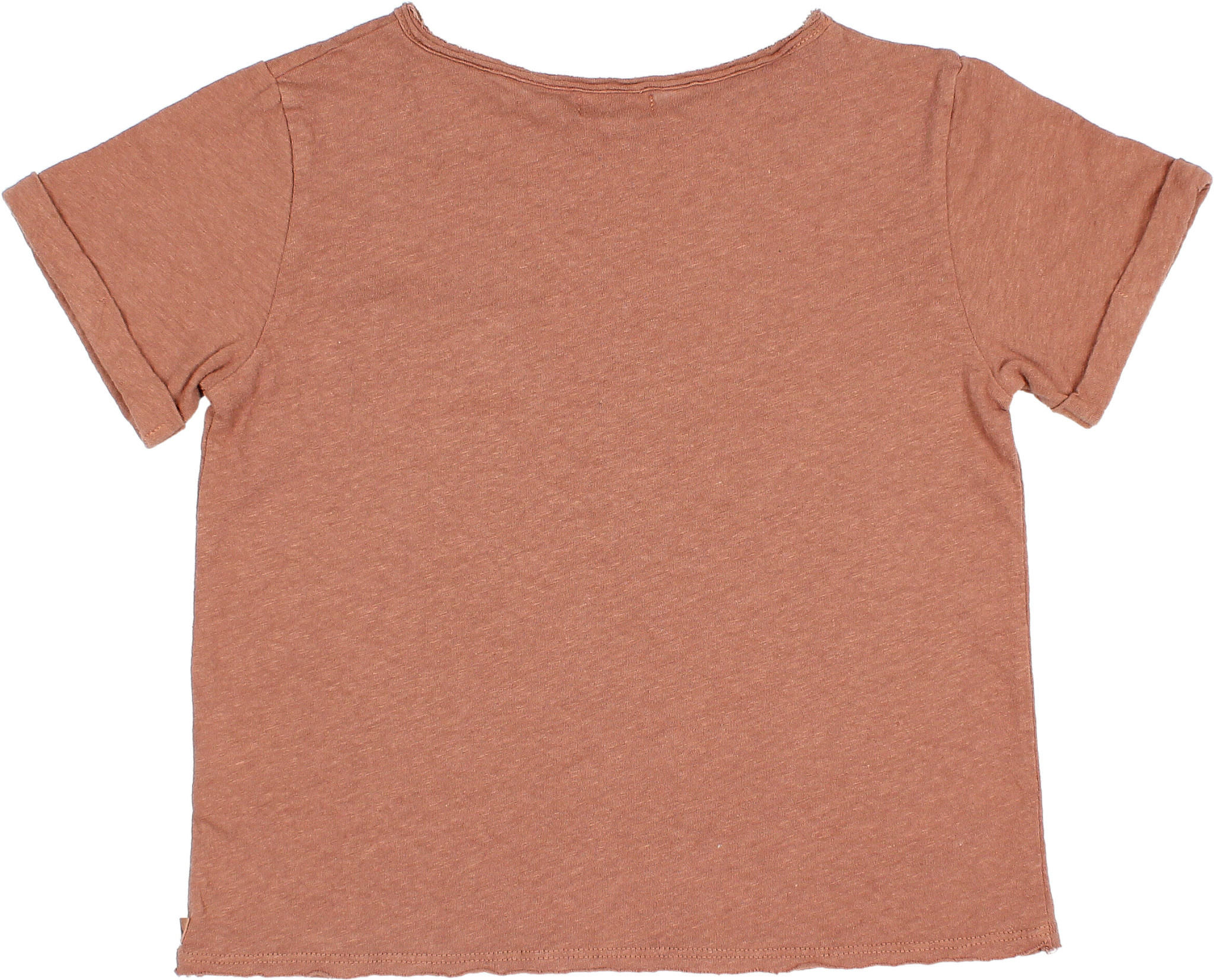 James t-shirt cocoa-2