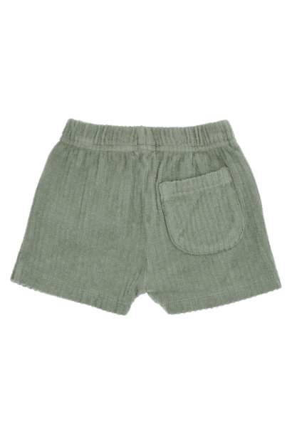 Ben balsam shorts