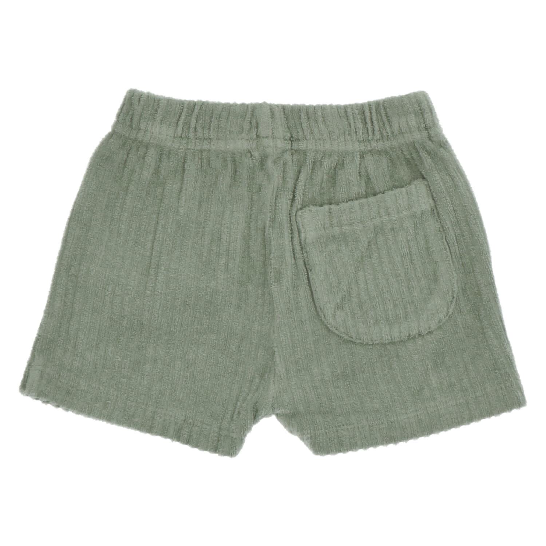 Ben balsam shorts-1