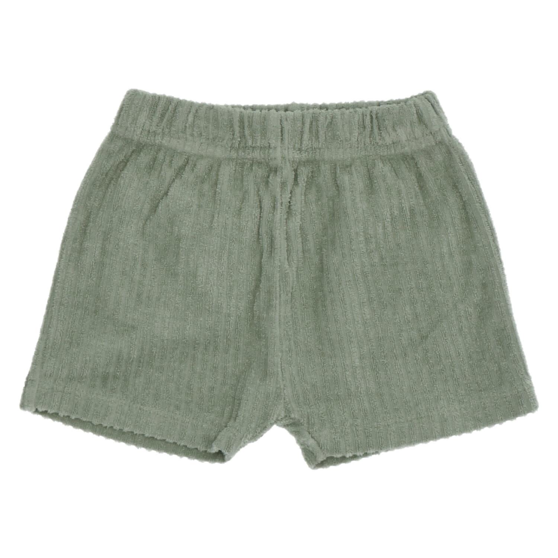 Ben balsam shorts-2
