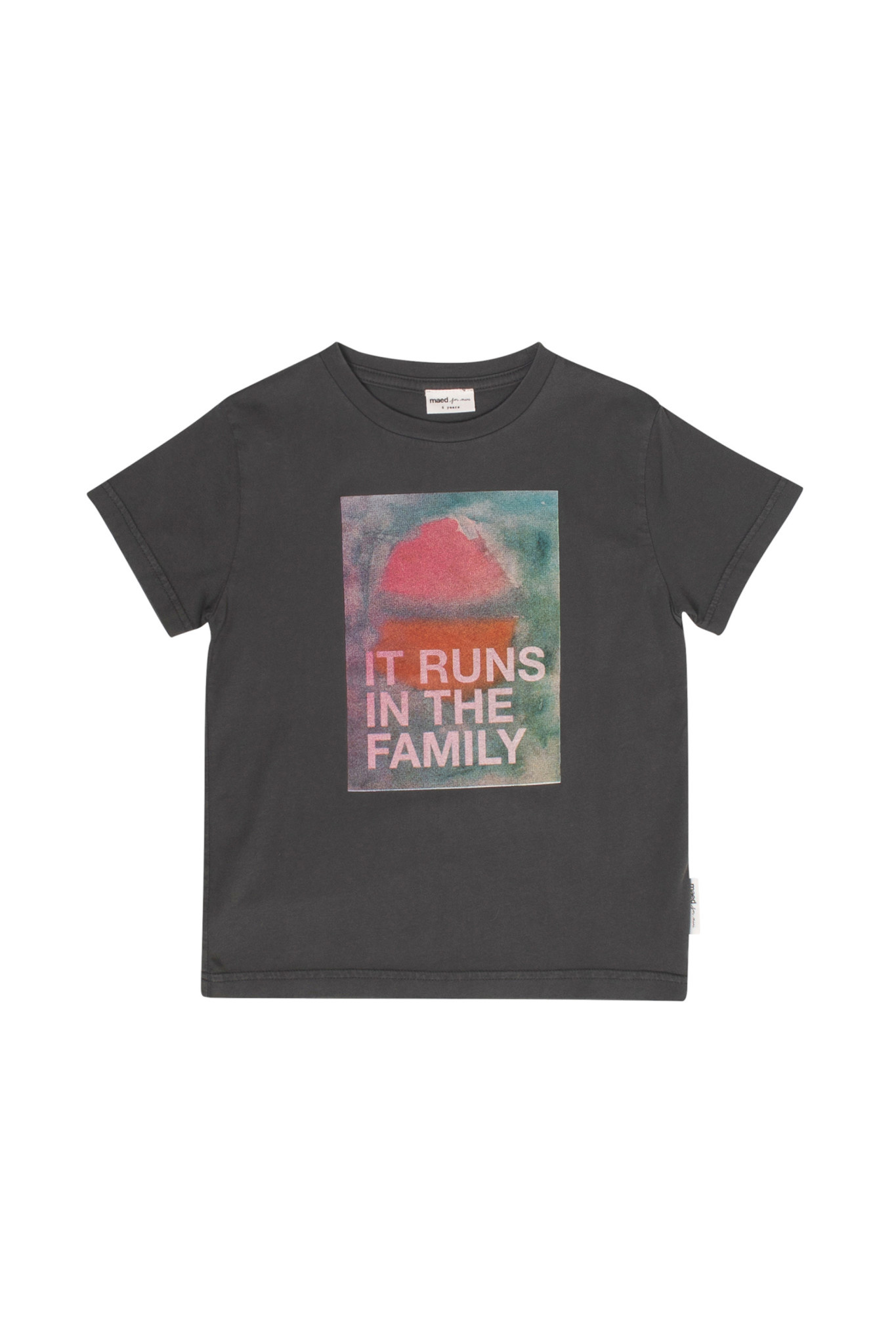 It runs in the family t-shirt baby-1