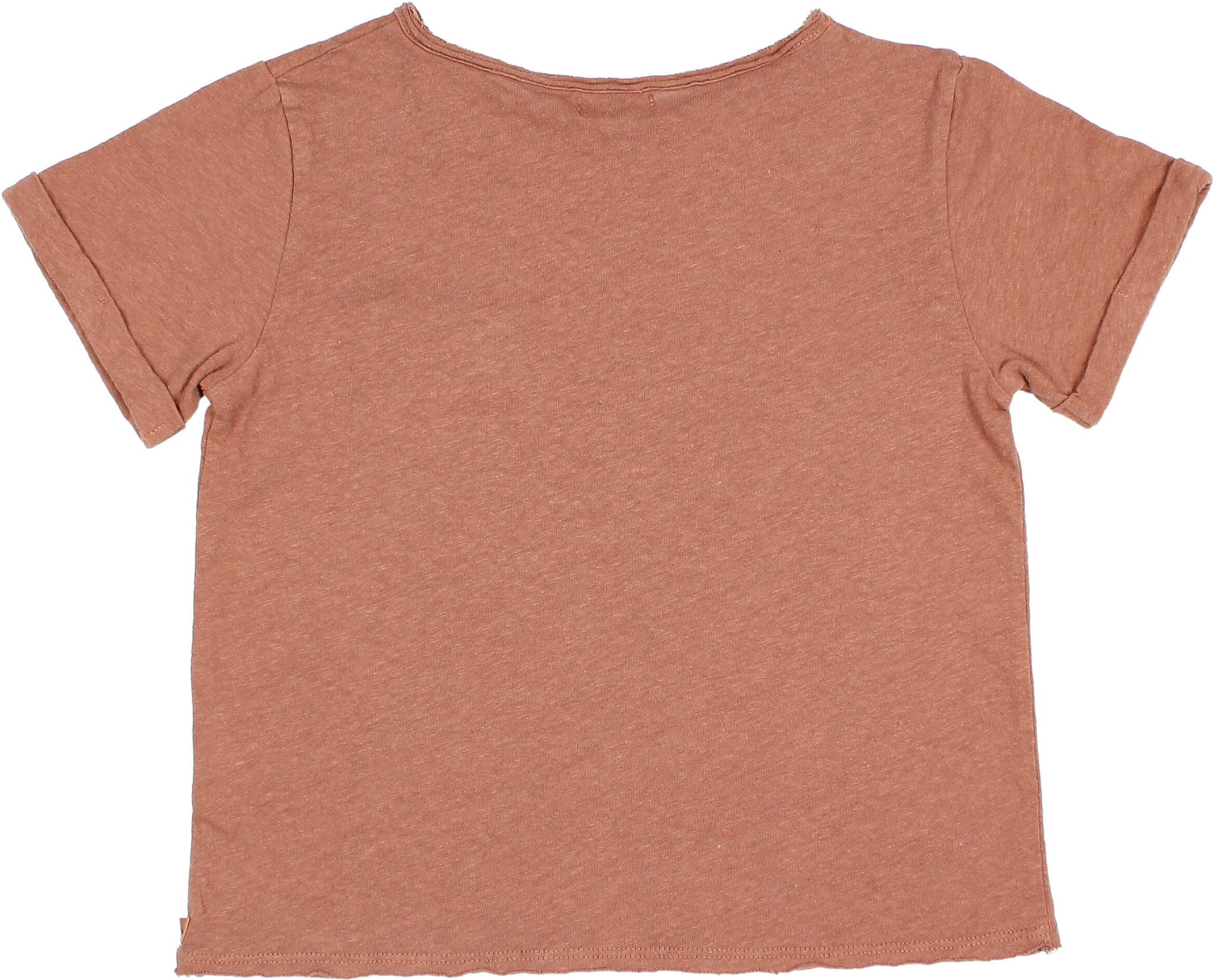 James t-shirt cocoa-5