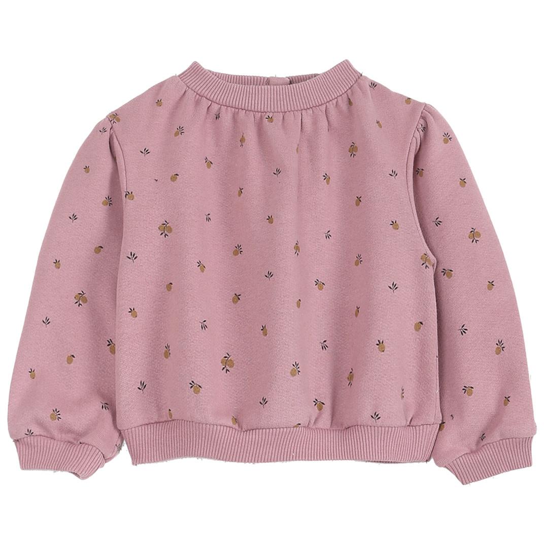 Sweatshirt mirabelle bois baby-1