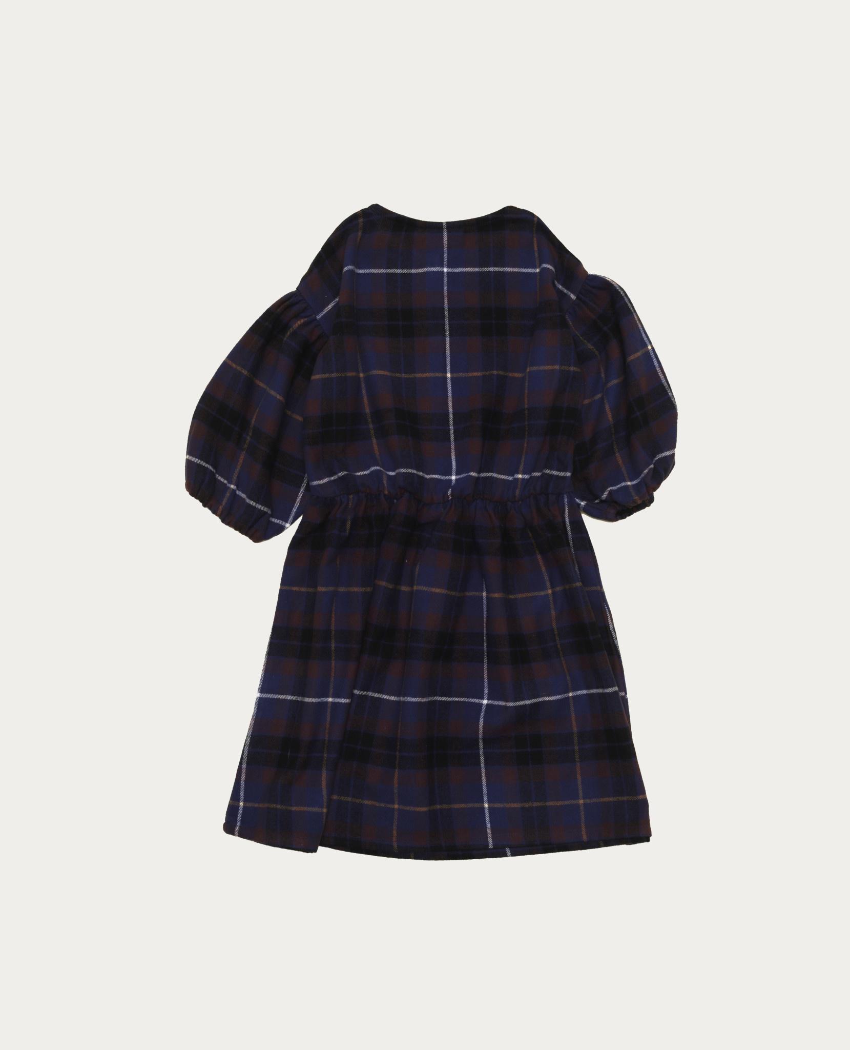 Blue checked dress-2