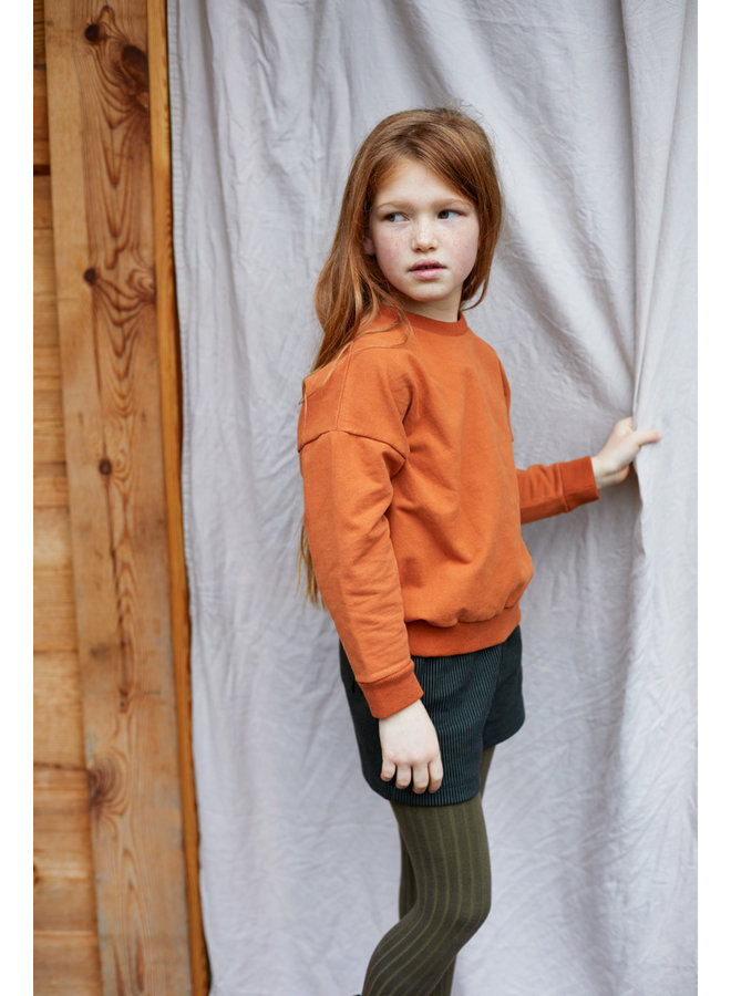 Mingo | cropped sweater | dark ginger