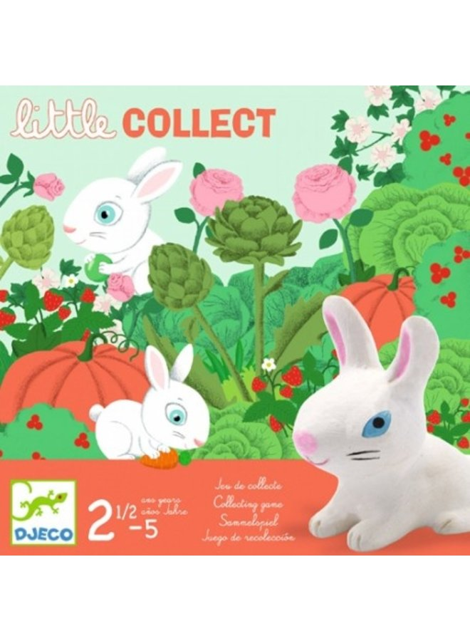 Djeco | peuterspel | little collect