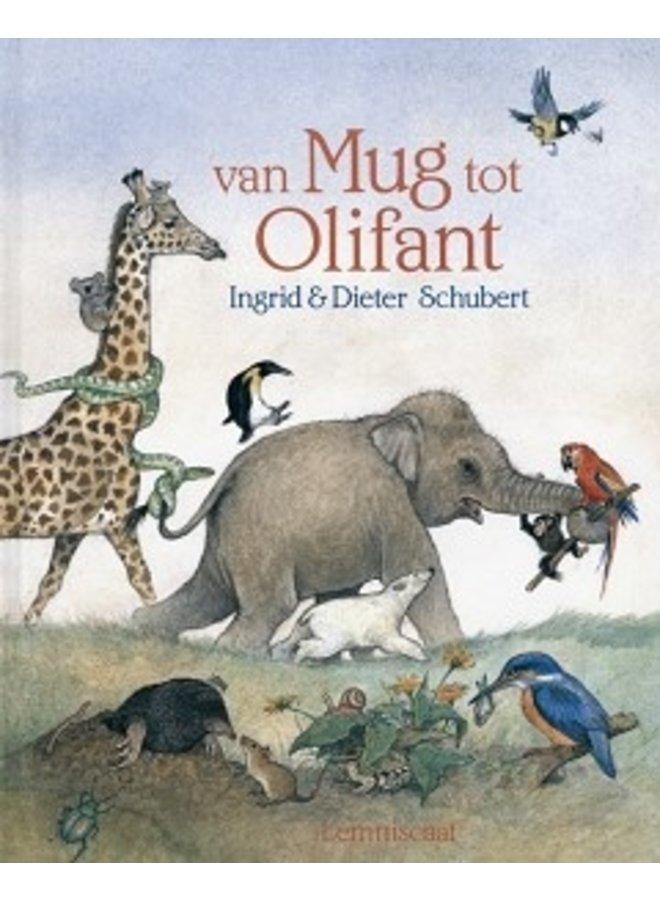 Boeken | van mug tot olifant | 5+