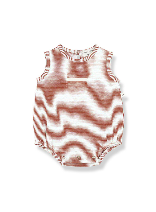 1+ in the family | tim romper | roibos