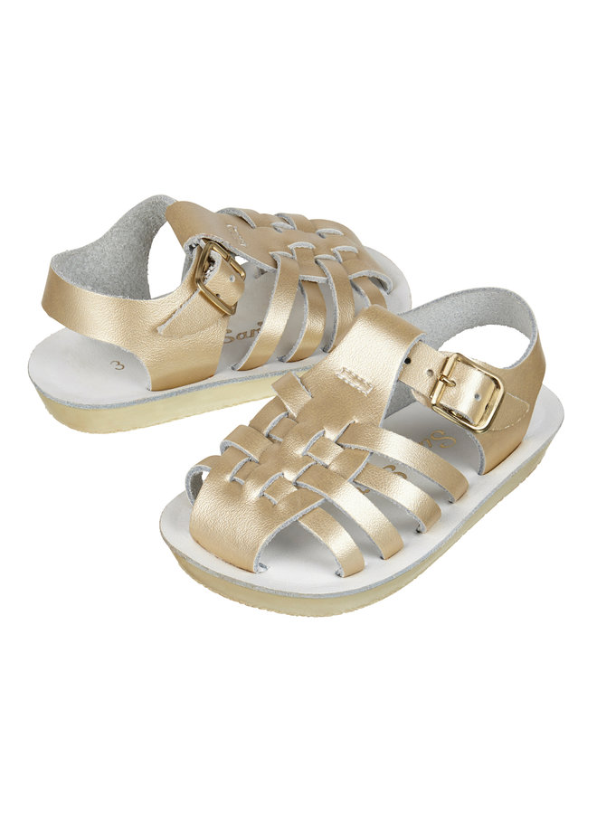 Salt Water Sandals   sailor   gold