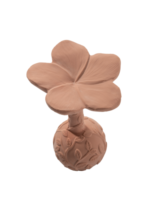 Natruba   rattle plumeria - rose