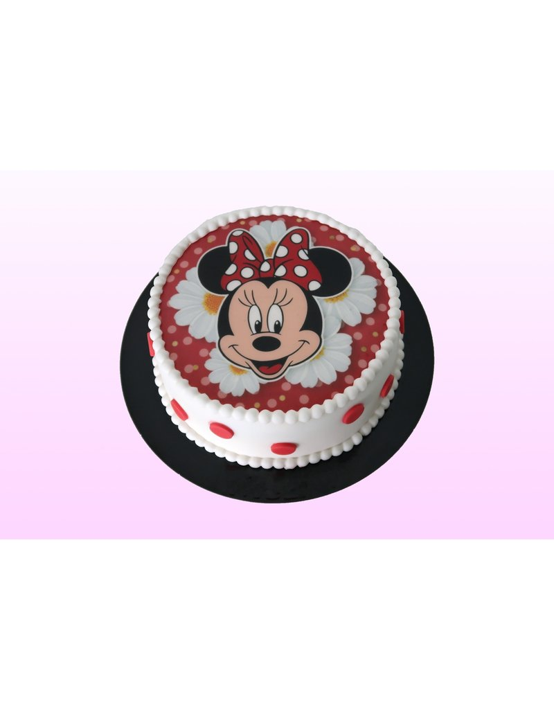 1: Sweet Planet Minnie mouse fotoprint Model 1
