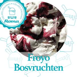 Roma-ijs Essen FROYO BOSVRUCHTEN