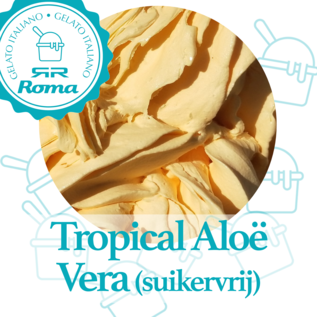 Roma Dagverse sorbet per liter Tropical Aloë Vera Suikervrij